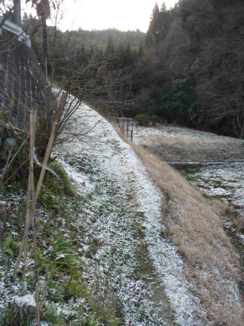 blog_import_550a184f82e63 うっすらと雪!!