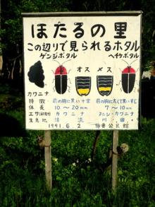 blog_import_550a1a938952a 「ふれあい広場」と「ホタル祭り」ありがとうございました