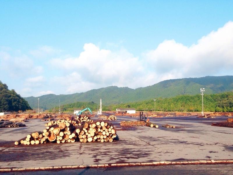 blog_import_550a1be2e49cc 伊賀市の原木市場、