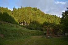 blog_import_550a1cc89814c 極上の眠り体験 小屋建方完了!