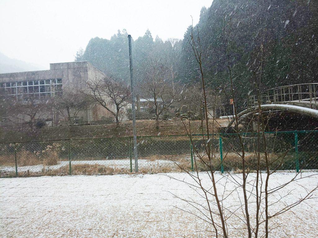 2021.1雪-1024x768 新年明けましておめでとうございます!伊賀市の山のめぐみ舎です!